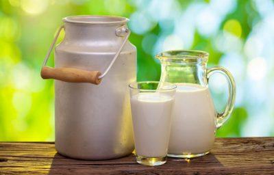 Como anda o leite no Mercosul?