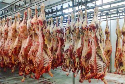 Carne bovina é destaque nas exportações de proteína animal em agosto